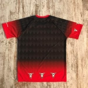 Camiseta del grupo Liquen parte posterior . Se ve el degradado y la cabeza de vaca en el pecho, en negro y rojo.